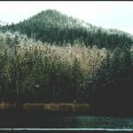 озеро Узловое