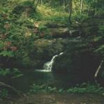 река Кравцовка